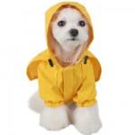 pets-dog-raincoat-l